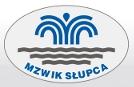 mzwik_slupca